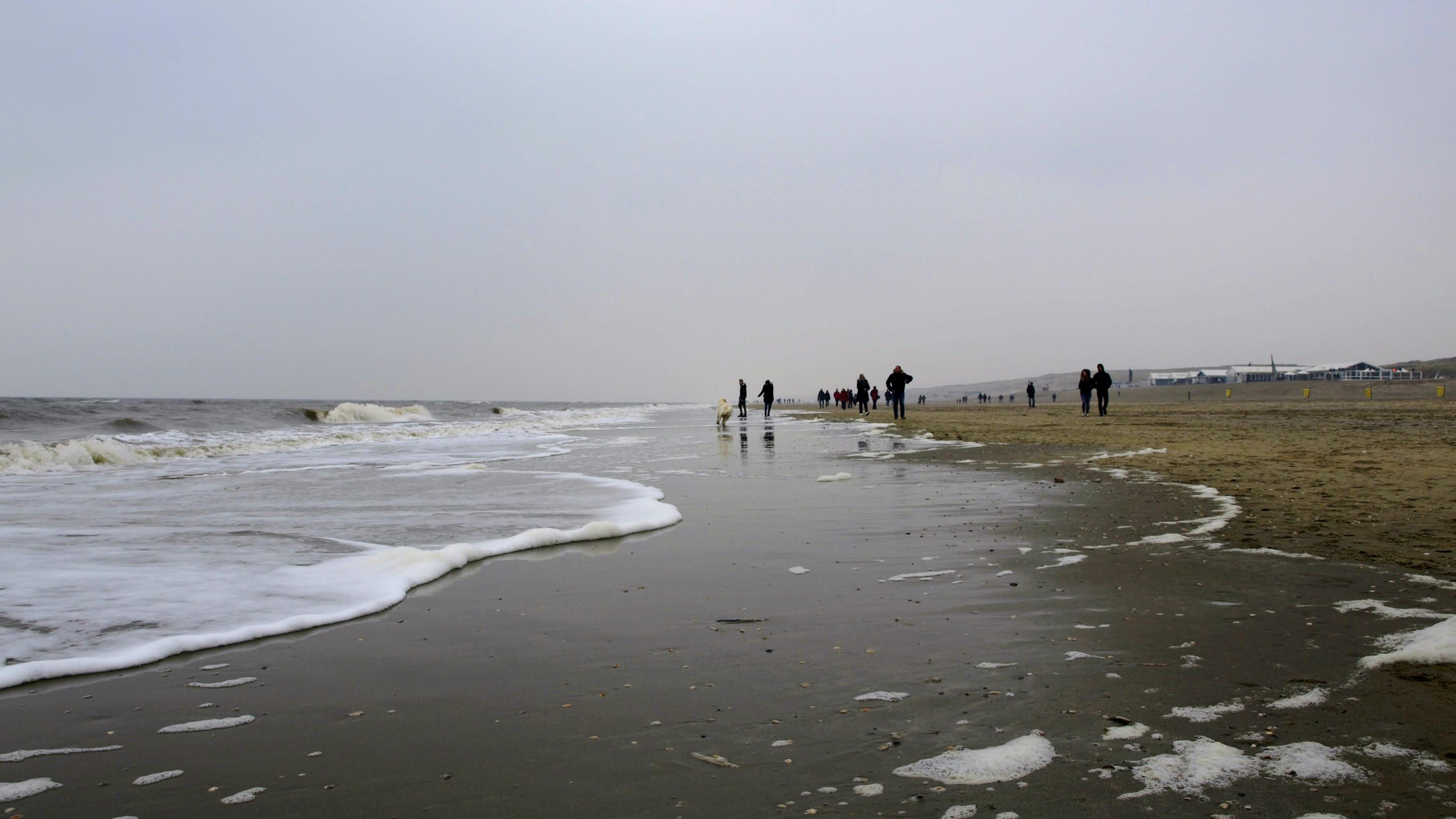 Pláž v Noordwiiku