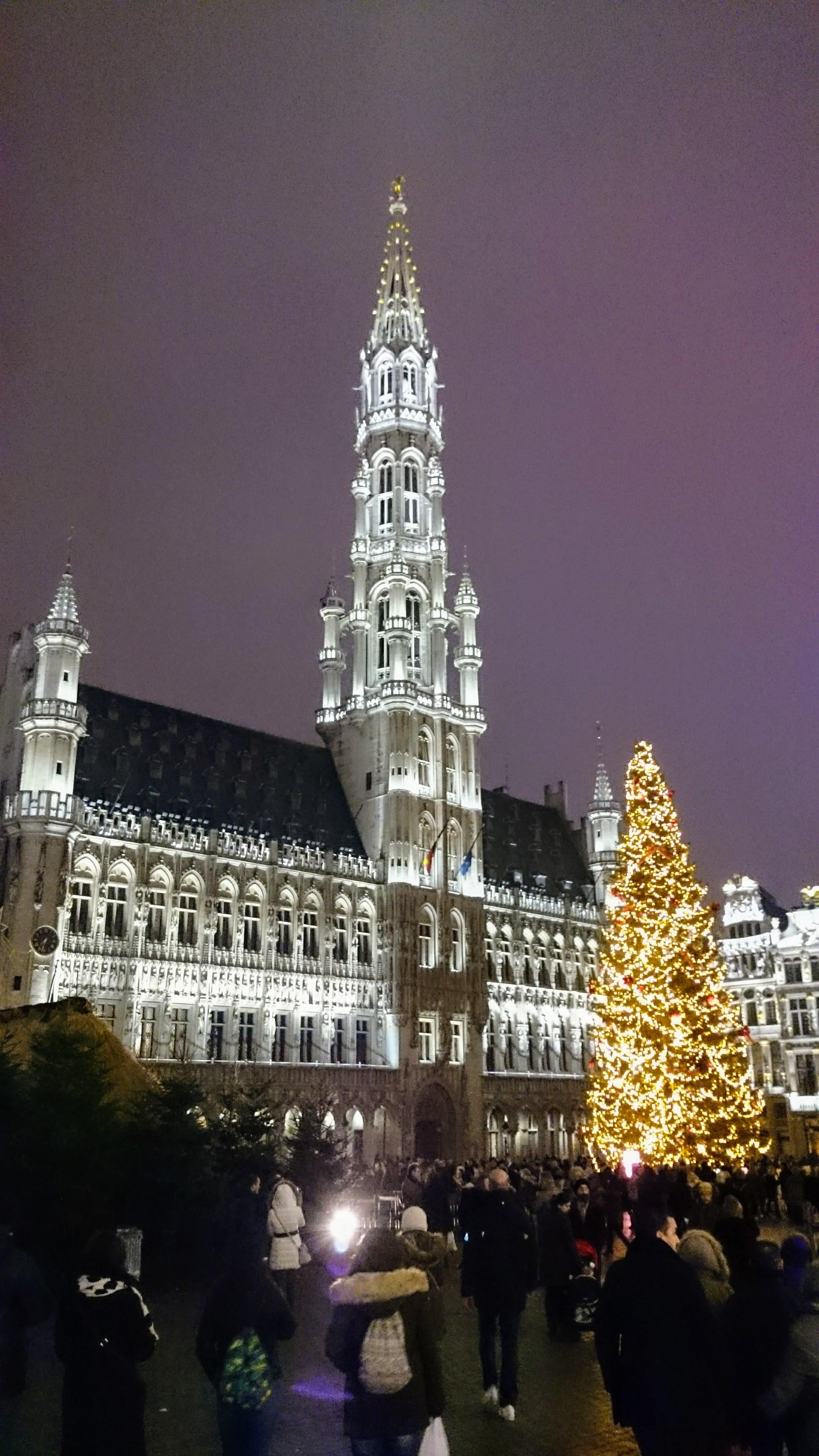 Osvětlená radnice v Bruselu