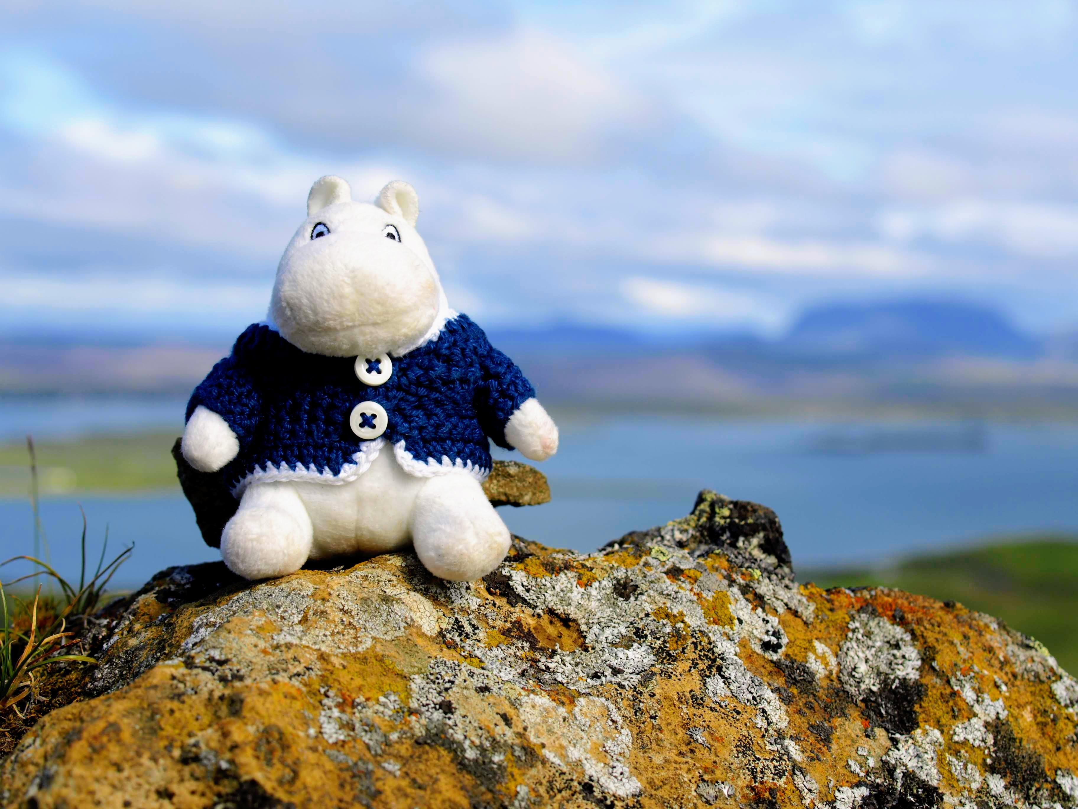 Mumínek a jezero Mývatn