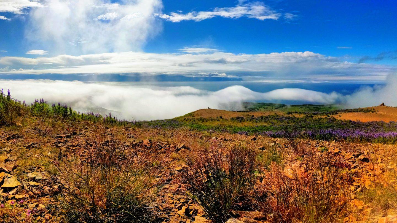 Pohled z vrcholu Húsavíkurfjall