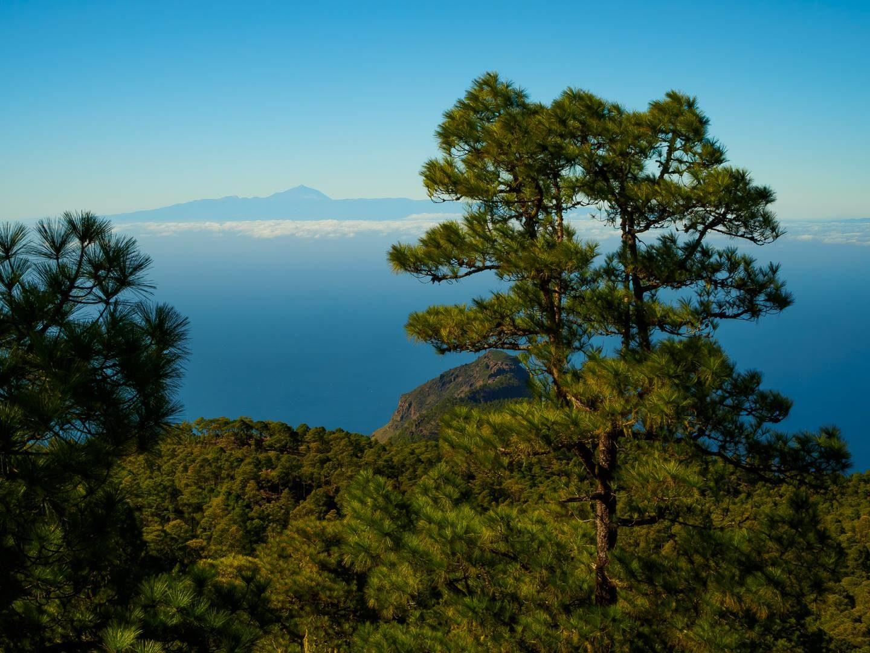 Výhled na Tenerife z hory Tamabada