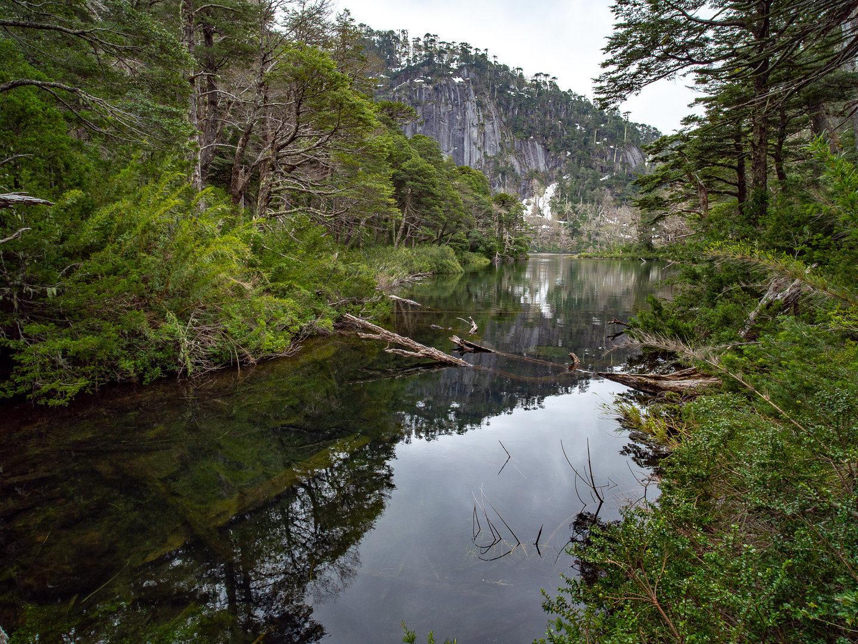 Lago Chico, NP Huerquehue