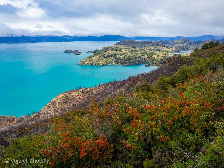 Rozkvetlé pobřeží jezera General Carrera