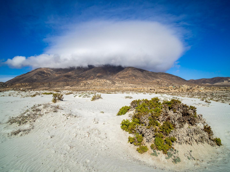 Atacama – Pacifické pobřeží (3)