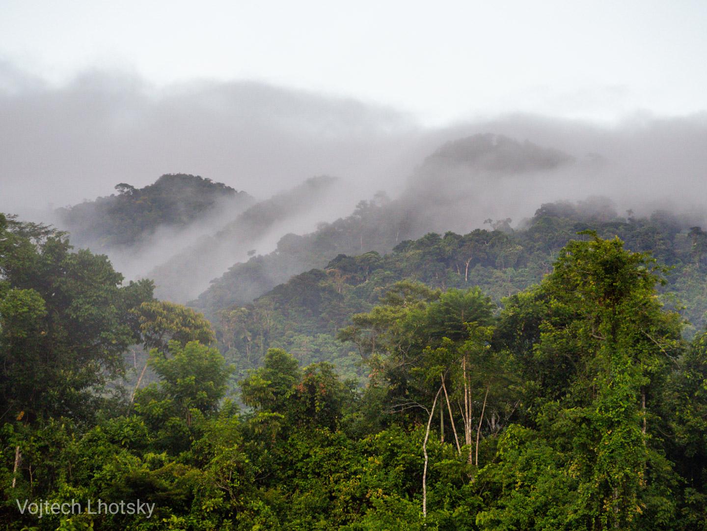 Video: Národní park Manu