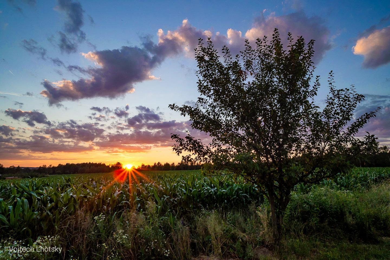 Západ slunce na Třeboňsku